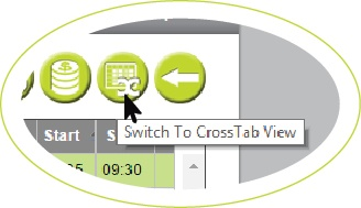 Crosstab Button